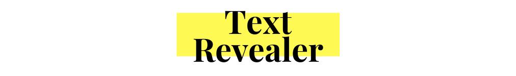 Text Revealer Js Demo